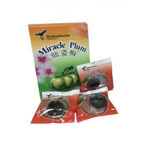 Miracle Slim Plum 3 pieces